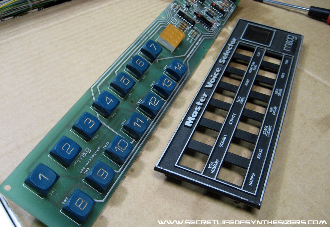 Polymoog button panel