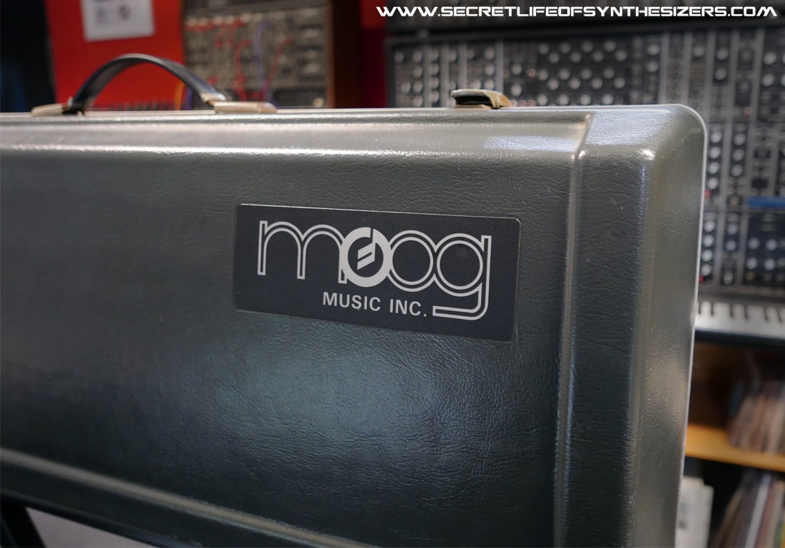 Moog Sonic Six case logo